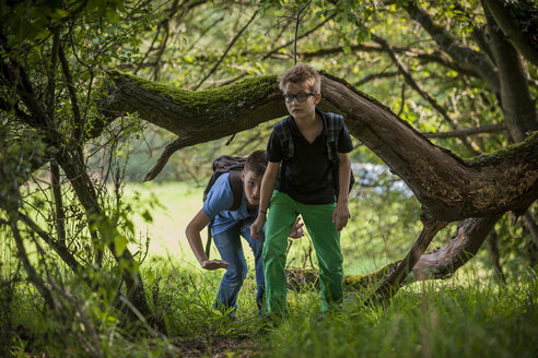Two boys exploring a forest - PAF000869