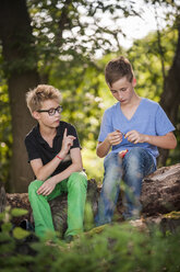Two boys sitting on a tree trunk cutting an apple with a pocket knife - PAF000871