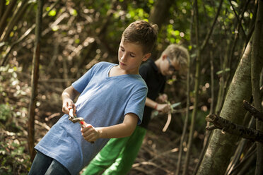 Two boys carving twigs with their pocket knives in a forest - PAF000877