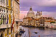 Italy, Venice, Santa Maria della Salute - APF000008