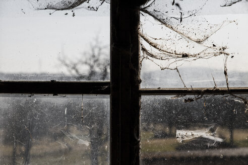 Germany, Baden Wuerttemberg, window with cobwebs - MID000003