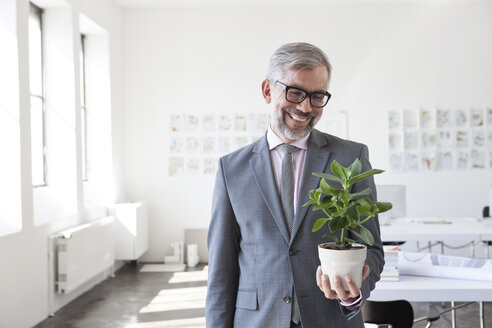 Portrait of smiling businessman looking at flower pot in an office - RBF001881