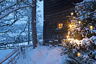 Austria, Salzburg State, Altenmarkt-Zauchensee, facade of wooden cabin with lightened Christmas Tree in the foreground - HHF004864