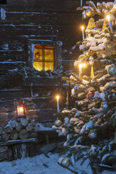 Austria, Salzburg State, Altenmarkt-Zauchensee, facade of wooden cabin with lightened Christmas Tree in the foreground - HHF004874