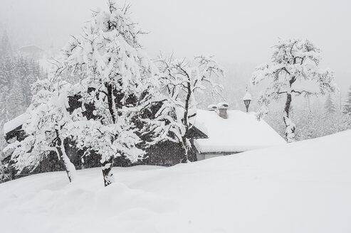Austria, Salzburg State, Eben, farm in snow - HHF004912