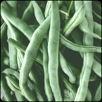 Green beans - SHIF000080