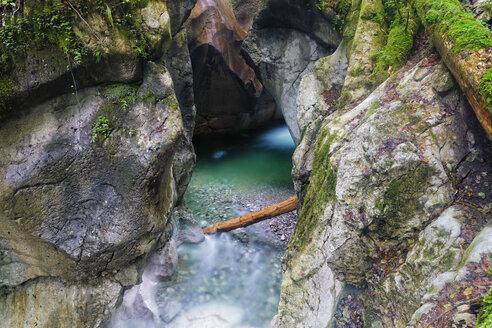 Austria, Salzburg State, Tennengau, Hallein, Taugl brook in the Strubklamm - GF000547