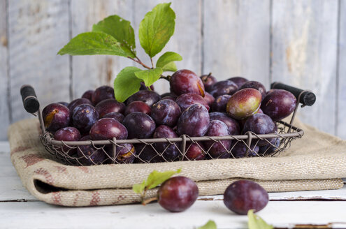 Wire basker of plums on a gunny bag - ODF000806