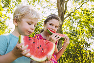 Children eating slices of watermelon in garden - MFF001283