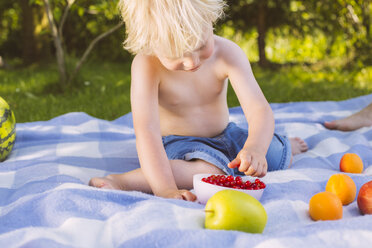 Boy picking redcurrants from a bowl on picnic blanket - MFF001291
