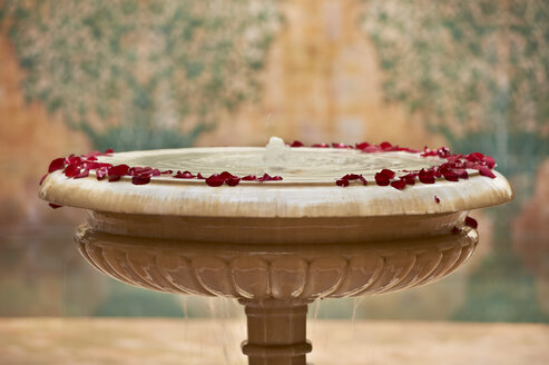 Morocco, Fes, Hotel Riad Fes, marble fountain with red rose petals - KMF001491