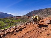 Morocco, Atlas Mountains, Ourika Valley, woman with packhorse on mountain path - AM002805