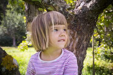 Portrait of little girl sitting on an apple tree - LVF001780