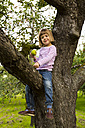 Portrait of smiling little girl with an apple sitting on an apple tree - LVF001795