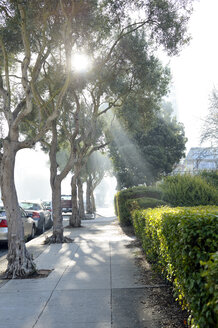 USA, California, San Francisco, sunbeams shining on walkway through fog - BR000772