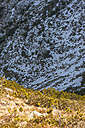 Austria, Salzburg State, Altenmarkt-Zauchensee, snow-capped cirque with mountain pines - HHF004895