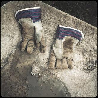 Worker's gloves in wheelbarrow - SHIF000088