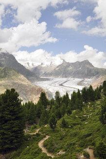 Switzerland, Wallis, Jungfrau-Aletsch-Bietschhorn, Aletsch Glacier - SCH000406
