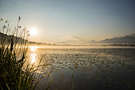 Germany, Bavaria, Fuessen, view to Hopfensee Lake at sunrise - WGF000458