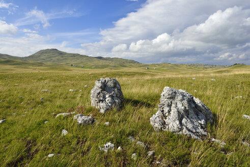 Montenegro, Crna Gora, The Balkans, montane steppe on Sinjavina or Sinjajevina plateau, Durmitor National Park - ES001368