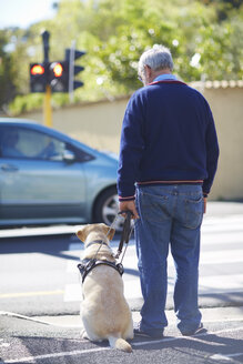 Visually impaired man waiting with his guide dog at pedestrian light - ZEF001000