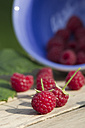 Bowl and raspberries on wooden table - YFF000246