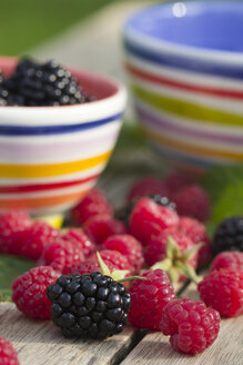 Bowl of blackberries and raspberries on wooden table - YFF000247