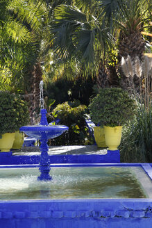 Morocco, Marrakesh, Majorelle Garden - RIM000295