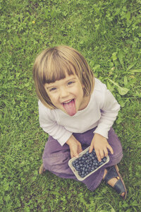 Portrait of little girl with outstretched tongue sitting on medow holding a box of blueberries - LVF002064