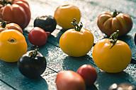 Heirloom tomatoes on blue wood - SARF000855