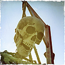 Skeleton hanging on gallow - DRF001100