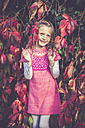 Portrait of smiling little girl standing between red vine leaves - SARF000861