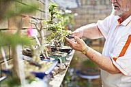 Senior man caring for plants - ZEF001107