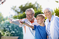 Grandparents with grandson in park pointing fingers - ZEF001133