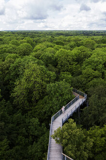 Germany, Thuringia, Hainich, canopy walkway Hainich - TKF000408