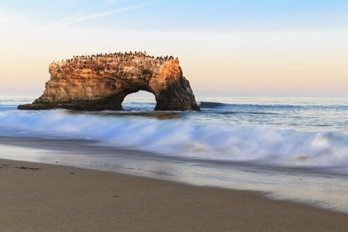 USA, California, Santa Cruz County, Big Sur, Pacific Ocean, Natural Bridges State Beach, Natural Bridge in the evening light - FOF007251