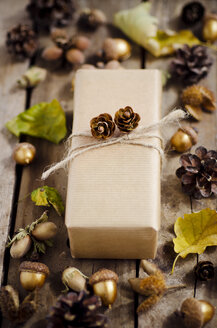 Wrapped present in between autumnal decoration - CZF000176