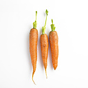 Three carrots in a row - SRSF000529