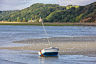 France, Brittany, Arguenon river - DSG000260