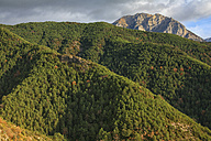 Spain, Ordesa National Park, mountainscape with forest - DSGF000490
