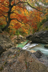 Spain, Ordesa National Park, river Anisclo - DSGF000486