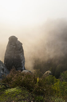 Germany, Saxony, Saxon Switzerland, National Park, Bastei rock formation in the fog - MJF001351