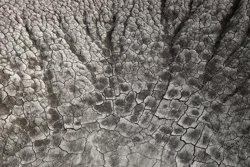 Spain, Bardenas, Cracked soil - DSGF000586