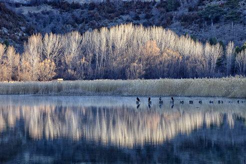 Spain, Cuenca, Lagoons of Jucar river near Una village - DSGF000647