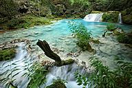 Spain, Urbasa y Andia Natural Park, Urederra river flowing between trees - DSGF000619