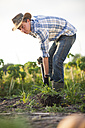 Young man digging on field - ZEF001206