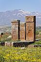 Turkey, Anatolia, Eastern Anatolia Region, Bitlis Province, Ahlat, Seljukian grave yard, Selcuklu Mezarligi, gravestones - SIEF006074
