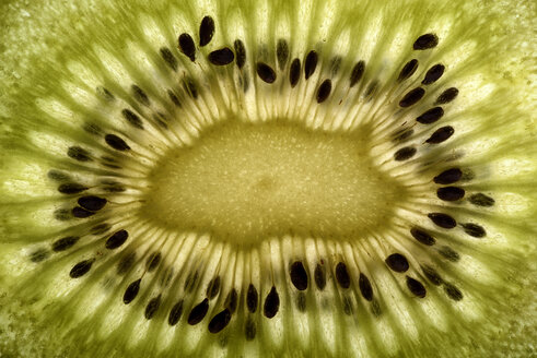 Slice of kiwi, close-up - MJOF000818