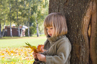 Little girl leaning at tree trunk looking at bunch of autumn leaves in her hands - LVF002010
