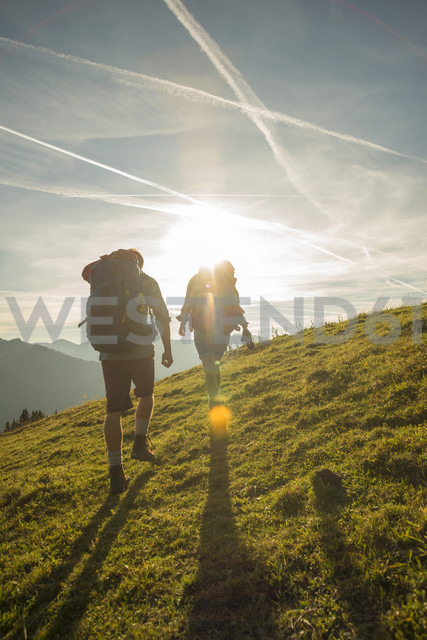 Austria, Tyrol, Tannheimer Tal, young couple hiking on alpine meadow - UUF002233